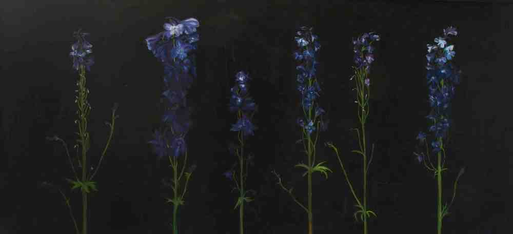 Blue Delphiniums by Andre LaHue