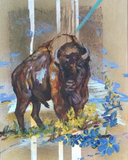 Give Me A Home Where The Buffalo Roam